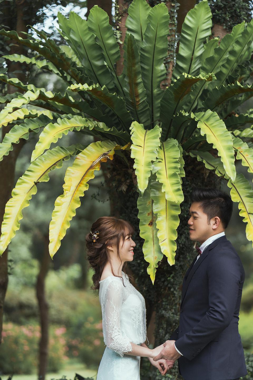 婚紗攝影 婚紗 美式婚紗 自然互動 笑容 冷水坑婚紗 陽明山婚紗 花卉試驗中心婚紗 攝影師 冬伴影像 北部_DB_8894